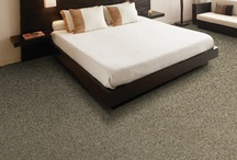 Carpet / Some Examples of Carpet products that we carry