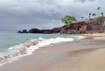 Maui Hawaii  / by Ramona Driessen
