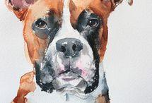 Dogs / Psy a kočičky