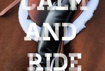 Equestrian addict