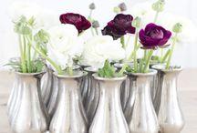 Bottles & Vases / by Dana Holly-Inman