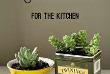 My Future Garden: Ideas
