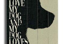 Ilovemydog