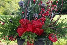 Christmas Decorations / by Debbie Shands