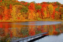 I love Autumn!