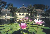 Balboa Park - Jewel of San Diego / Balboa Park in the heart of San Diego