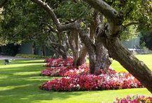 jardines para crear