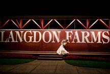 Langdon Farms wedding / Wedding, photography, rustic, Langdon farms, golf club