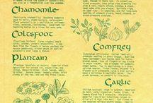 Health Medicinal Herbs
