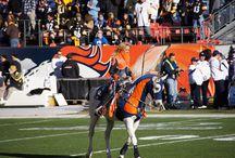 Denver Broncos Fans and Photos / We love our Broncos!!