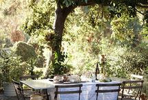 Provence / Provence