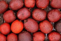 Fruits d'Amazonie