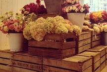 florist shop re-fit ideas