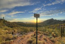 Scottsdale Homes / View our listings in and learn more about beautiful Scottsdale, AZ. Call The Matheson Team at (888) 986-1183.