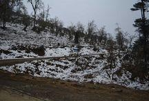 Phobjika, Bhutan / http://krishnandusarkar.com/journey-to-phobjika-via-dochula/