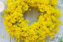 Flower for you / Idee e suggerimenti per le decorazioni e il bouquet