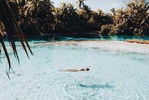 | Travel |
