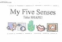 Preschool 5 senses