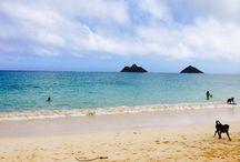 Hawaii 2015 Oahu