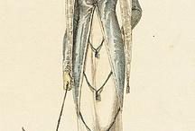 Opera Fashion and Costumes