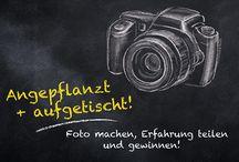 Angepflanzt + aufgetischt: Fotowettbewerb / Du ziehst dein eigenes Obst und Gemüse und das am liebsten mit den natürlichen COMPO BIO Produkten?  Dann zeig uns, wie du dein Gemüse, Obst und Kräuter auf Balkon, Terrasse und im Garten anbaust, pflegst und erntest. Unter allen Teilnehmern verlosen wir einen von 10 Wochenend-Trips für 2 Personen zu unserem exklusiven Kochevent in Münster. Teilnahme unter: http://www.compo.de/angepflanzt-und-aufgetischt