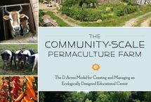To Nourish Our Minds / Some of our absolute favorite permaculture books!