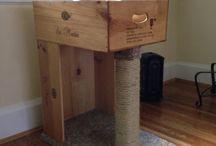 Cat Trees &  Furniture