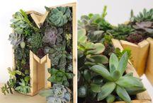DIY Bricolage & Jardinage