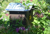 Garden Ideas / This shows easy to gardening trends that you can use in your garden.