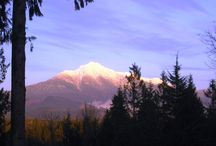 Silver Peak / Many of my stories take place in a fictional Pacific Northwestern town called Silver Peak: an amalgamation of my birth town and my new home town with a little of my husband's home town thrown in for good measure. Many other Snohomish County cities exist in my alternate universe with altered names.