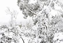 SNOW in Orange NSW / Winter 2015 in Orange NSW Australia