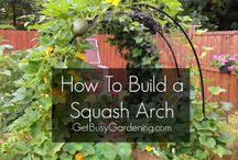 arch garden 2016