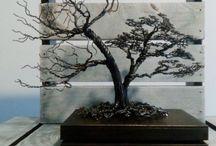 moje drzewa