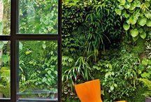 Terrazas y Jardines · Terraces and gardens