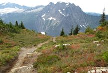 Hikes&places to go in Washington  / by Rebekah Gagnon