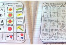 Ed-U : Interactive notebooks
