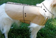 sewing fore dogs
