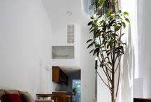 Árbol en interior