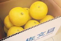 TOSASHIMIZU  LOCAL  PRODUCTS / 高知県土佐清水市で生まれた 新ブランド