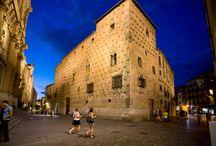 Salamanca / Salamanca es conocida en todo el mundo por su tradición universitaria y por su legado artístico: dos catedrales, palacios, iglesias, su Plaza Mayor... con variadas tendencias artísticas: Románico, Gótico, Plateresco, Barroco...