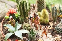 4-H Horticulture
