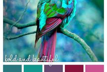 | Color Palettes | / Find color inspiration everywhere you look...