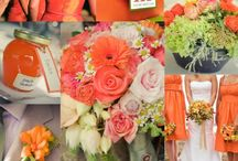 Rachael's Wedding Board / orange, and peach colors / by Chris Riley