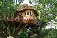 Treehouse's / by Sandra Fortner