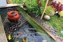 taman kolam simple