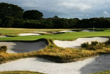 Melbourne Sandbelt / come play not only the best courses in melbourne! but, the best in the world!