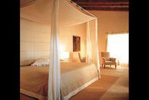 Bedroom ideas / by Elizabeth Smith