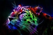 Beautiful Artworks