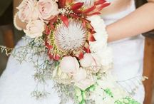 My Wedding ❤ / Champagne pink, Coral and Navy colours. Proteas as my flowers. Simple yet elegant ❤ Alot of ideas thanks to Pinterest!