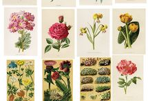 Patterns, Design and Art / by Priscyla Tenório